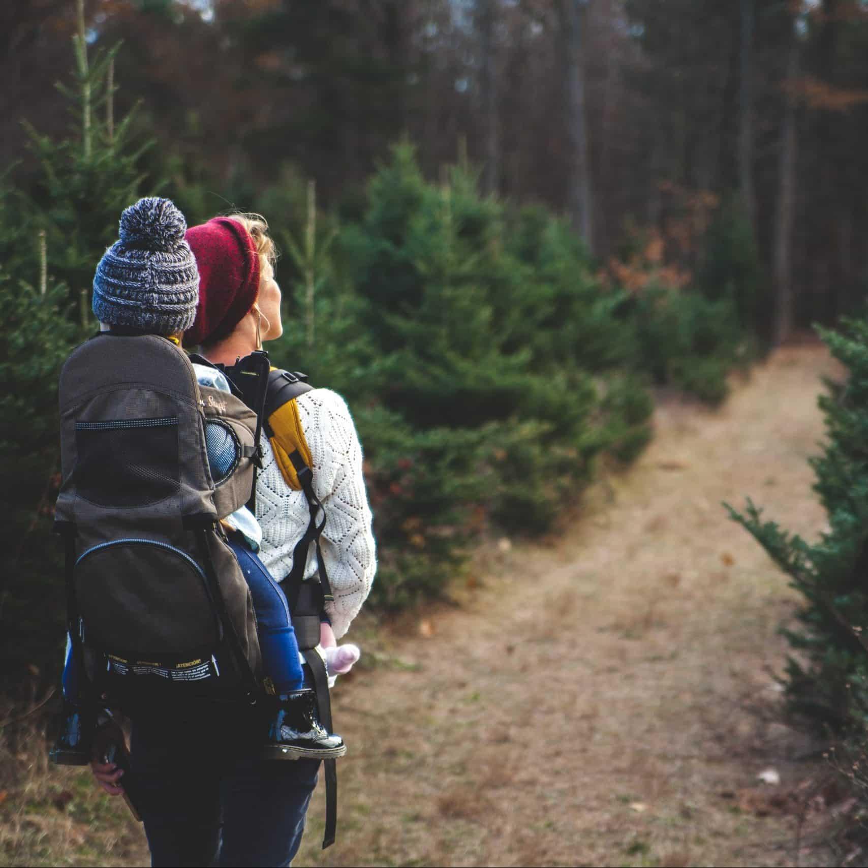 Mutter mit Kind wandert im Wald